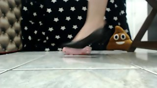 Crushing my stuffed pig (it could be you paypig!)