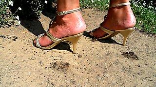 Inna crush ants 176-58-40